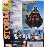 Storm_boxback1
