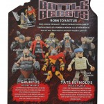 BB1-Gruntos_Tate_Back