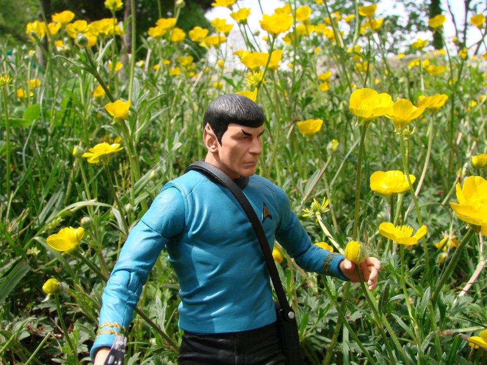 SpockFlowers