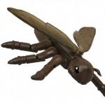 Ant-Thony1